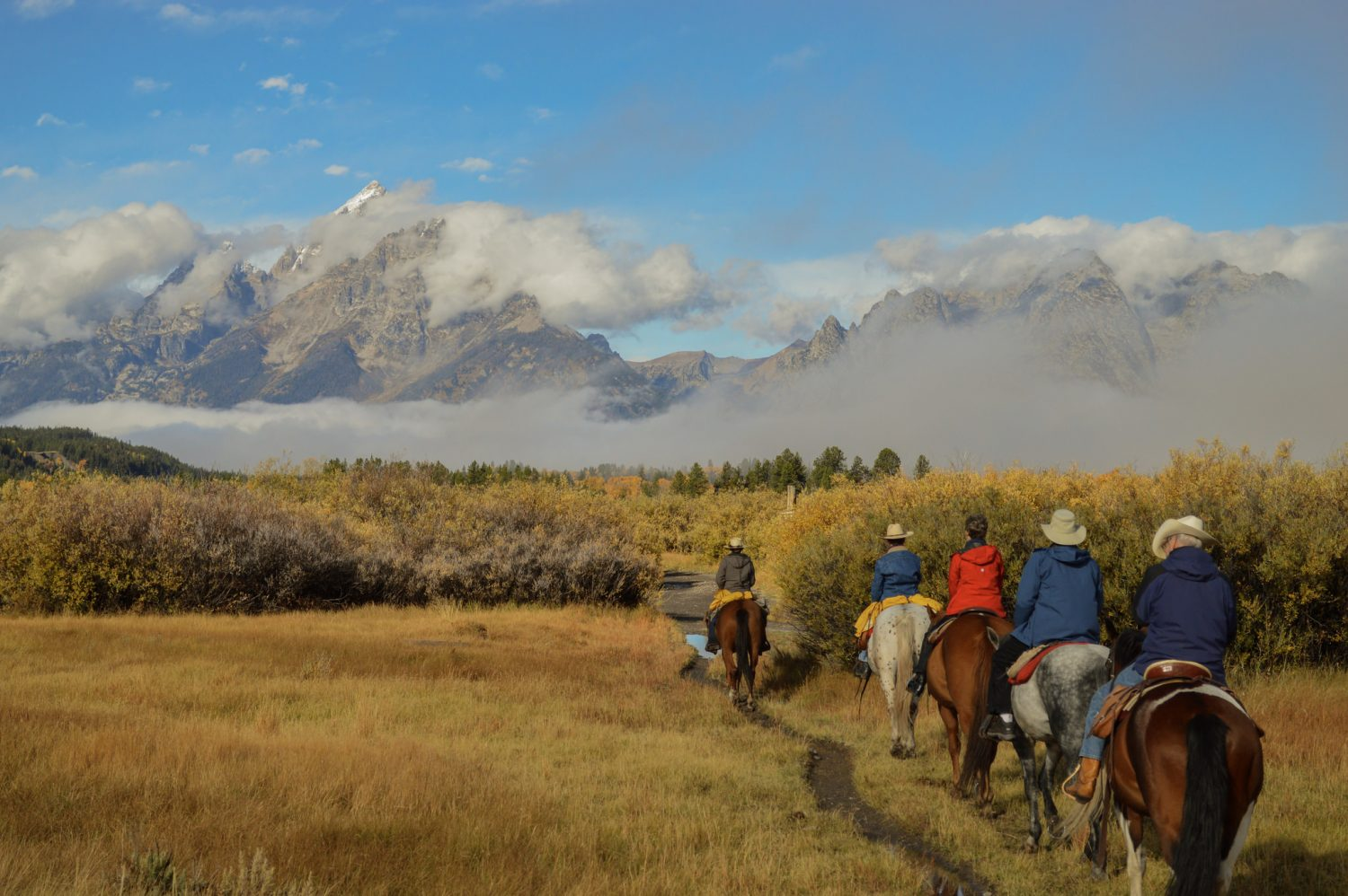3 hikes you have to do in Grand Teton National Park