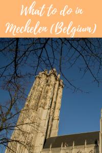 What to do in Mechelen