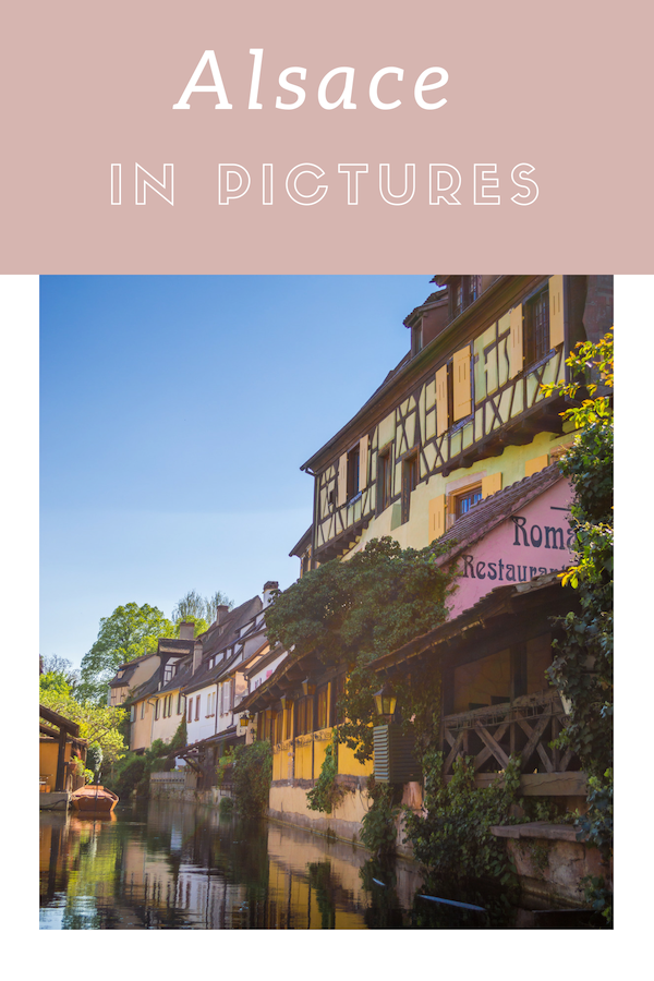 Alsace pictures