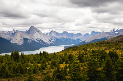4 hikes you have to do in Jasper National Park