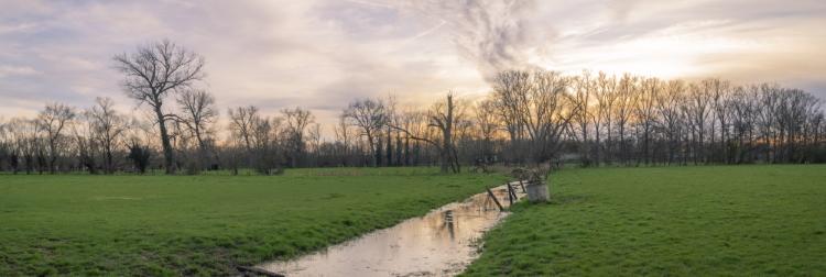 Vrijbroekpark