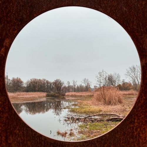Hobokense polder